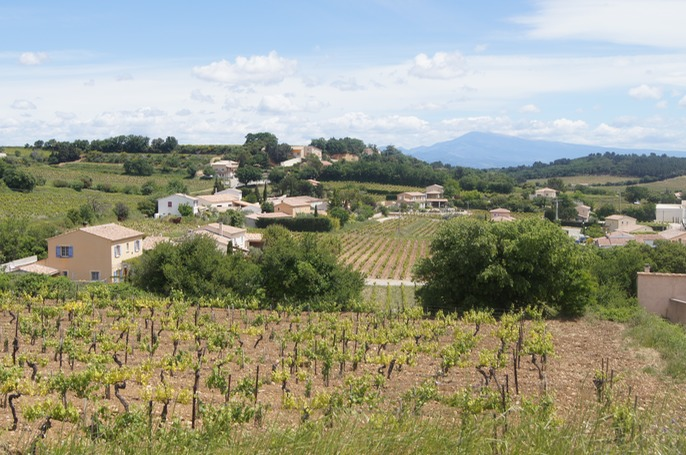 The vineyards of Châteauneuf-du-Pape