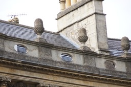 Acorns of Bath