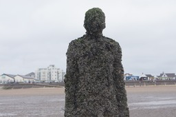 Sir Anthony Gormley's Statues after 9 years on Crosby Beach